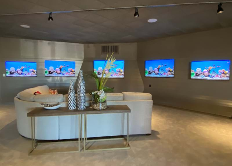 A rounded sofa facing a wall of different sized flatscreen TVs, all displaying aquariam screen savers